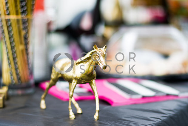 Toy horse on a table, Denise Benson Photography - Colorstock: diverse stock photos