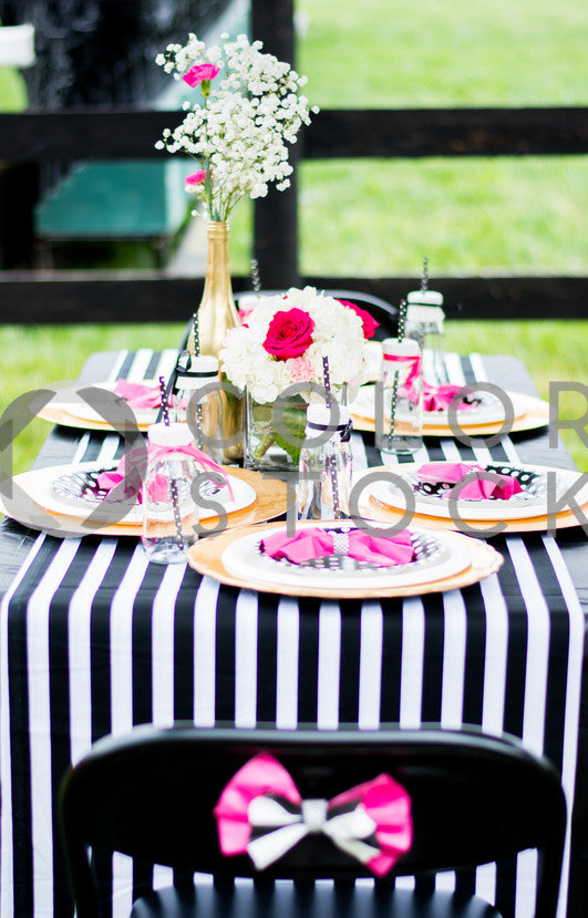Tablescape Vertical, Denise Benson Photography - Colorstock: diverse stock photos