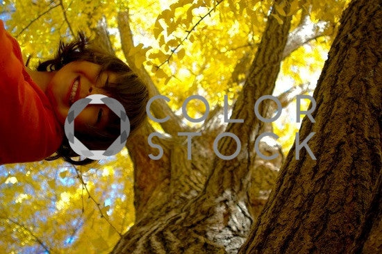 Girl in a tree - Colorstock™  © Anna-Rhesa Versola  - diverse stock photos