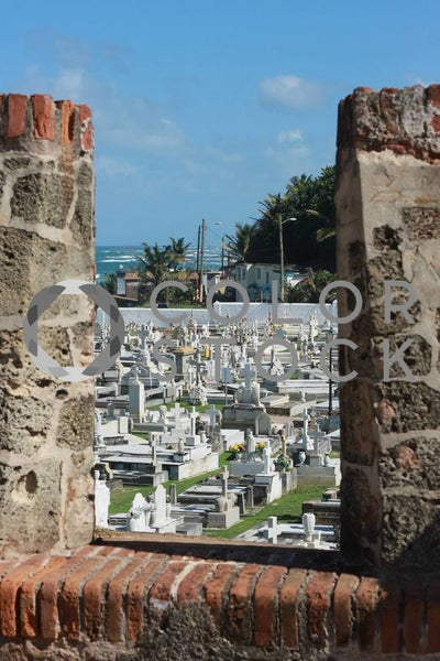 Cemetery - Colorstock™  © Janan Graham-Russell  - diverse stock photos