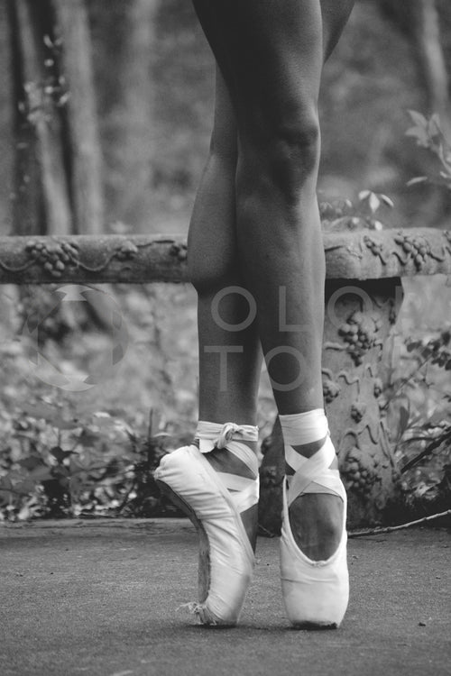 Ballet dancer on pointe - Colorstock™  © Spencer Greene  - diverse stock photos