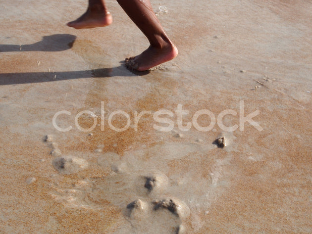 Boy's feet in the sand at beach - Colorstock™  © Jenifer Daniels  - diverse stock photos