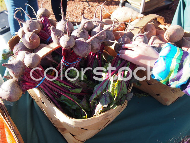 Child looking at vegetables at farmer's market - Colorstock™  © Jenifer Daniels  - diverse stock photos