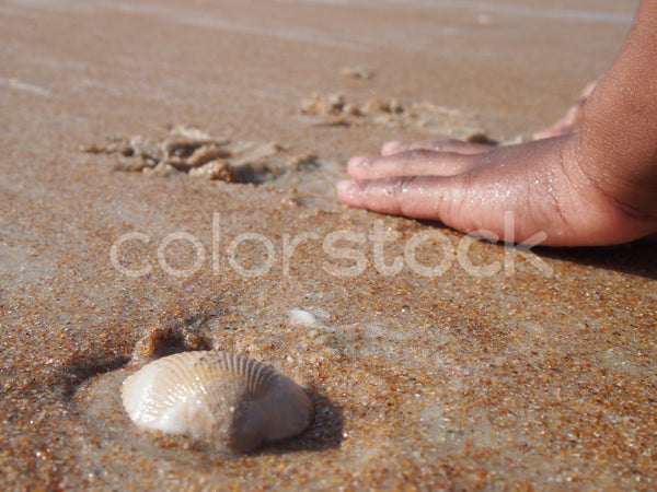 Child playing in the sand at the beach - Colorstock™  © Jenifer Daniels  - diverse stock photos