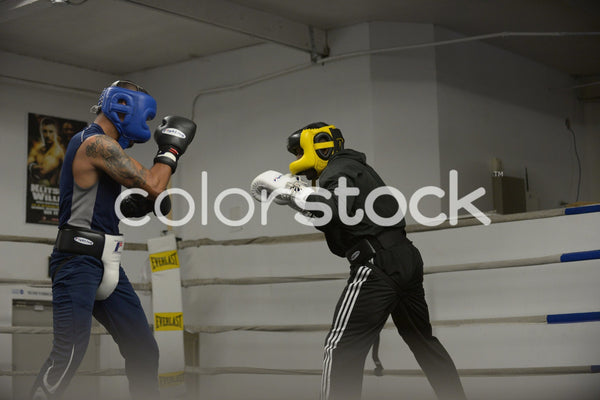 Young men boxing - Colorstock™  © PorterhouseLA  - diverse stock photos