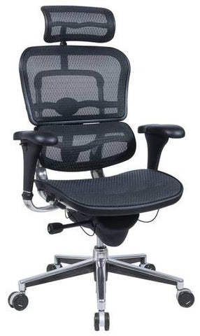Ergohuman High-Back Chair, Mesh Upholstery with Adjustable Headrest