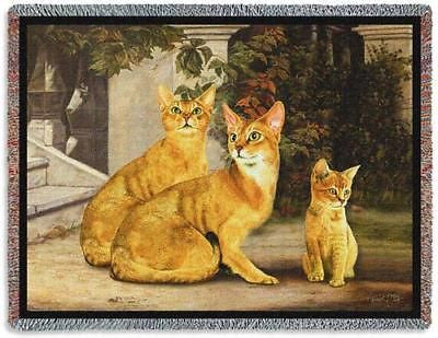 70x53 ABYSSINIAN CAT Throw Blanket