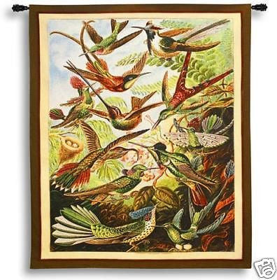 62x41 Trochilus Hummingbird Tropical Tapestry Wall Hanging