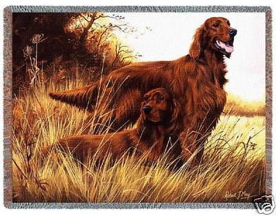 70x53 IRISH SETTER Dog Tapestry Throw Blanket Afghan