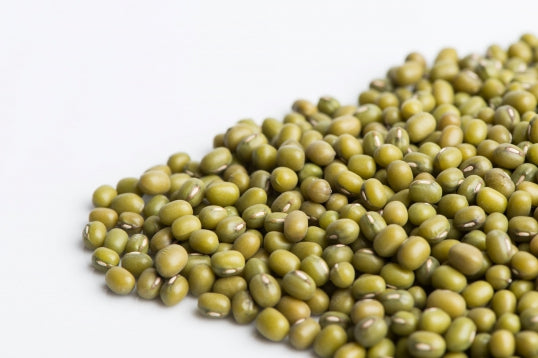 Mung Beans Sprouting Seeds