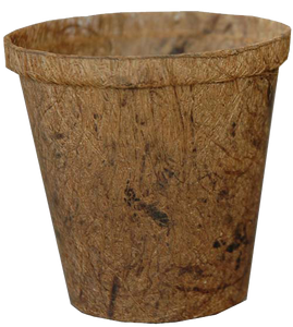 "Fibre pot 4.5"" wide round"