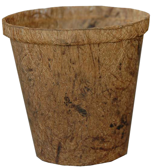 "Fibre pot 4"" wide round"