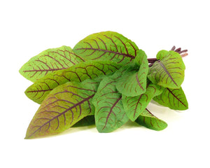 Click and Grow Refill 3- Pack - Bloody Sorrel