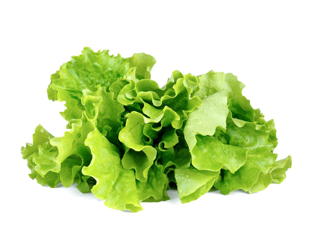 Click and Grow Refill 3- Pack - Green lettuce