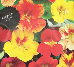 Nasturtium, Single Climbing Tall Mix