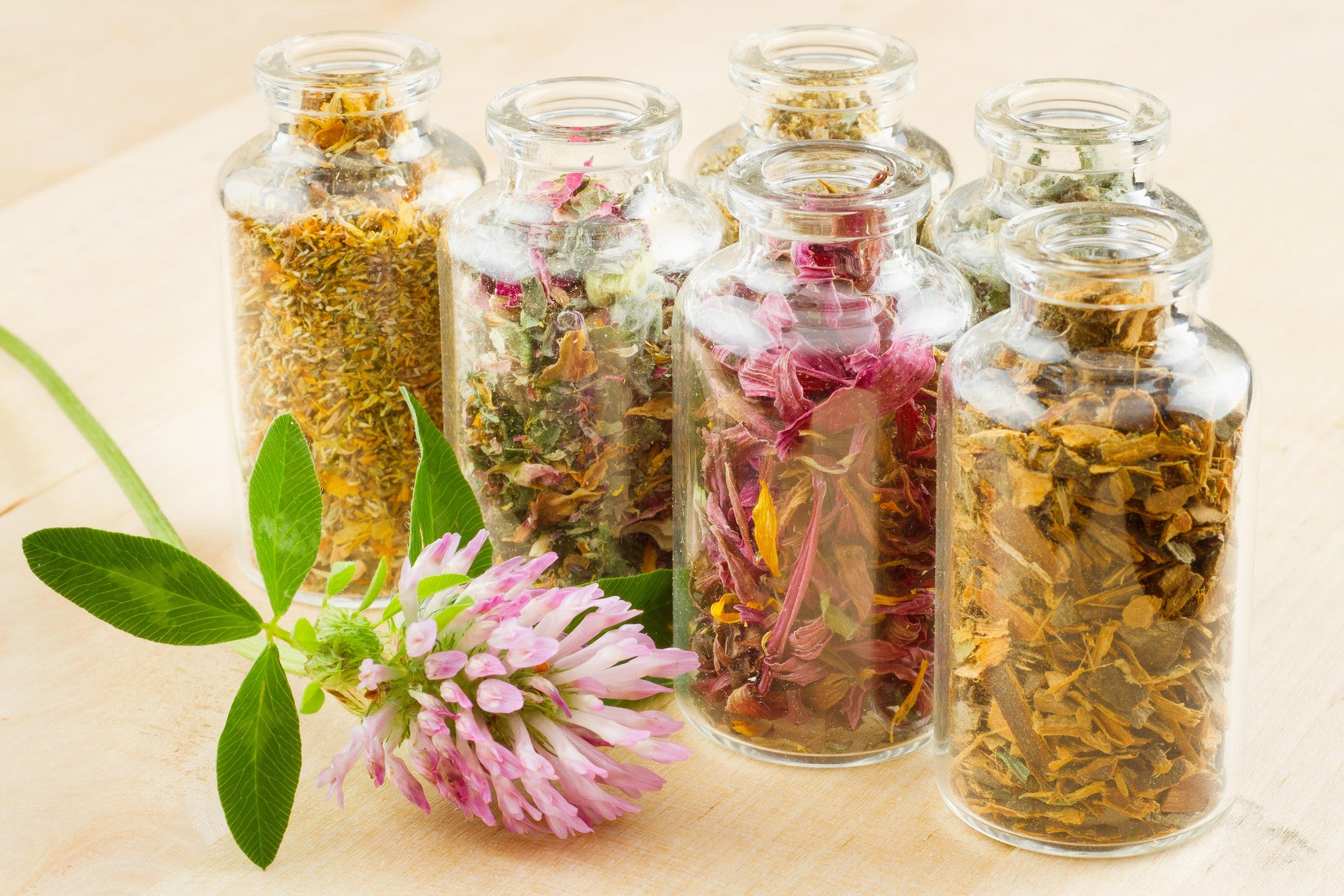 Homeopathy & Phytotherapy follow up consultations (UK Nationwide)