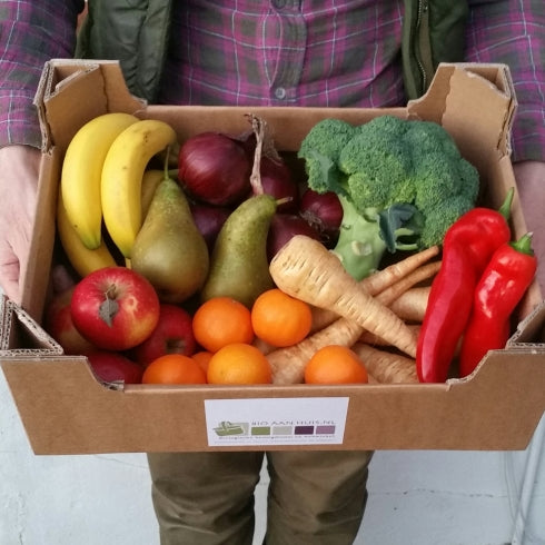 Fruit & Veg Box,   Bio Groente & Fruit Doos, The Netherlands delivery only!
