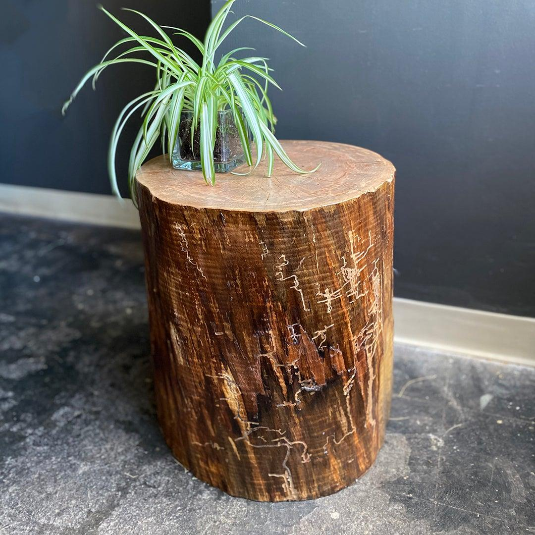 Picture of: Log Stump Side Table Susie Frazier