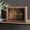 Wooden Shadow Box