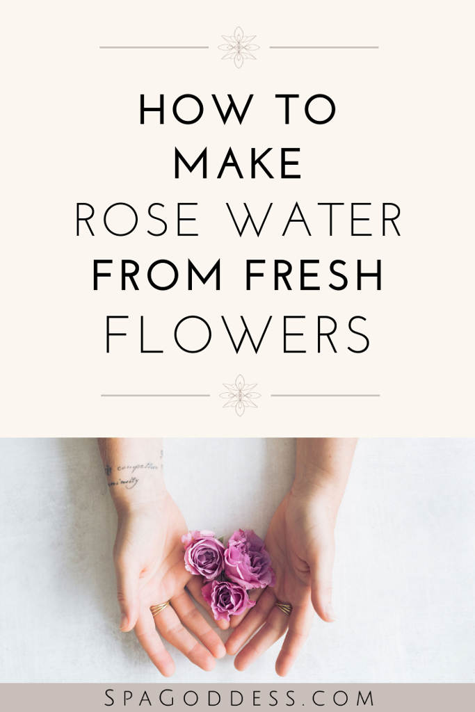 how to make rose water with fresh flowers - spagoddess apothecary
