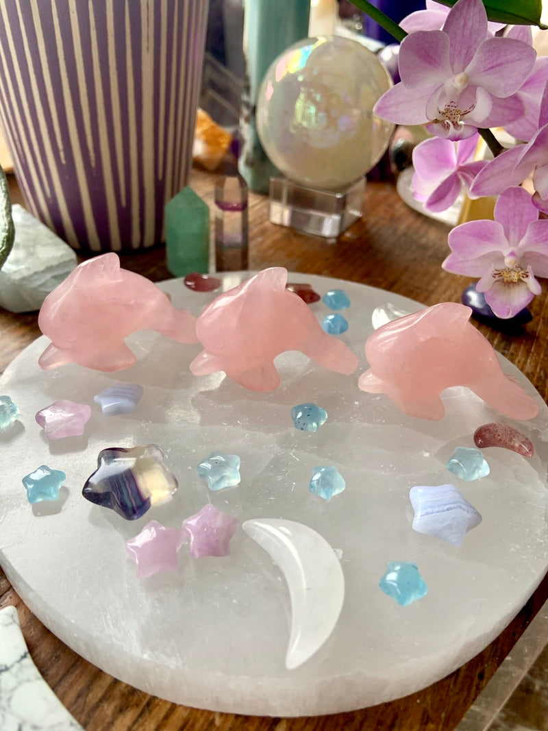 ROSE QUARTZ DOLPHINS ~ Hand-Carved Rose Quartz Crystal Dolphins