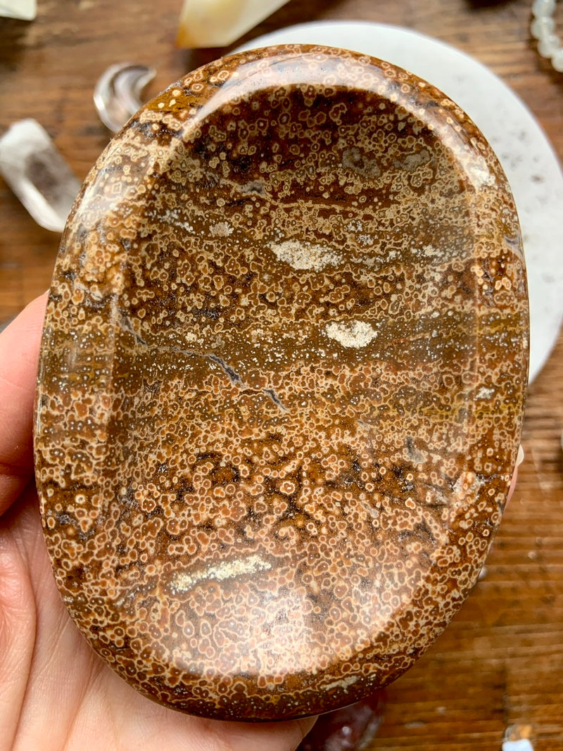 Orbicular OCEAN JASPER Offering Bowl ~ One of a Kind Crystal Bowl