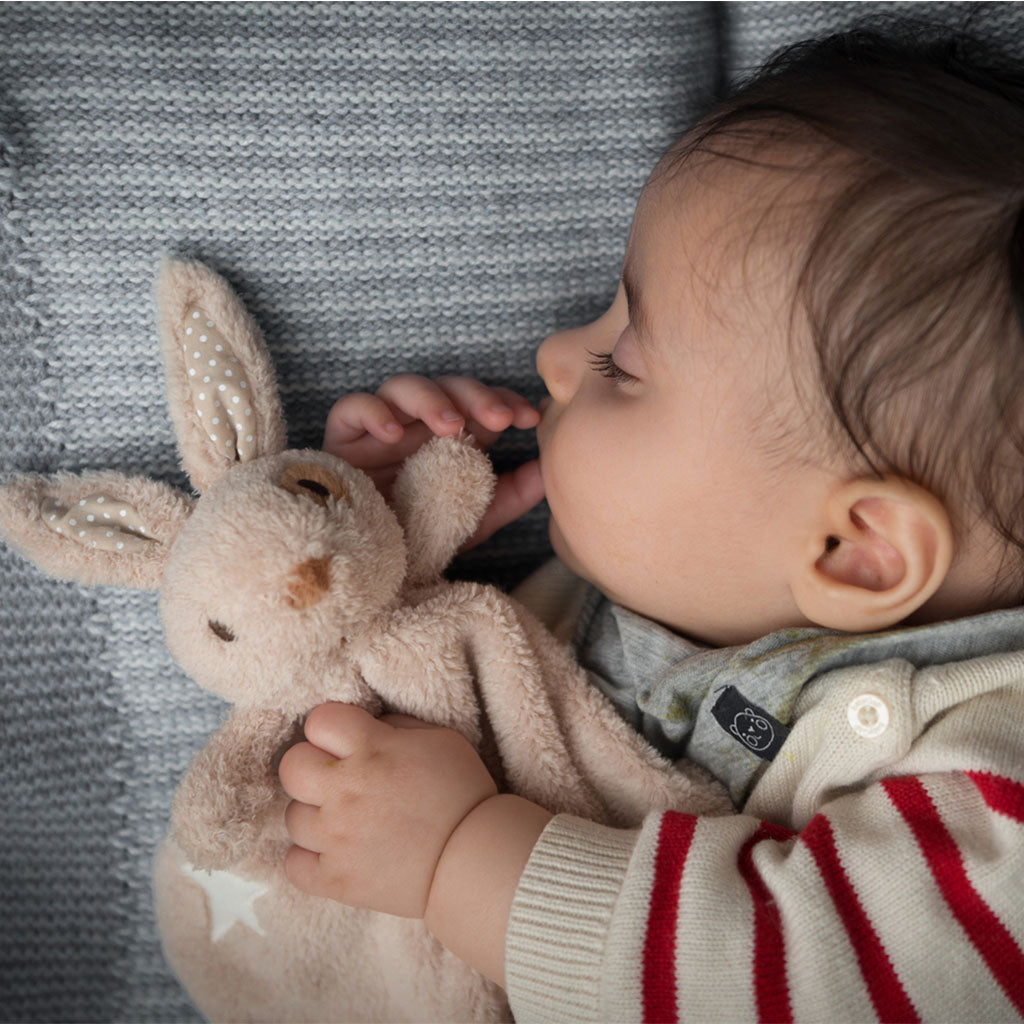 Ragtales Baby boy rabbit bunny blankie set-Ever Simplicity