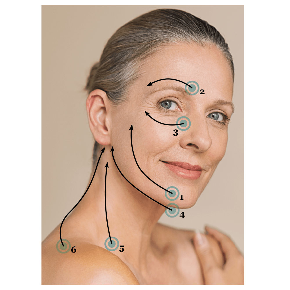 Facial cupping diagram