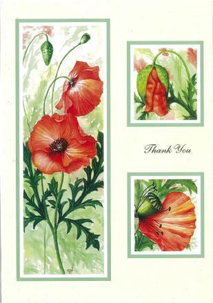 Poppies Thank you cards (pack of 5)