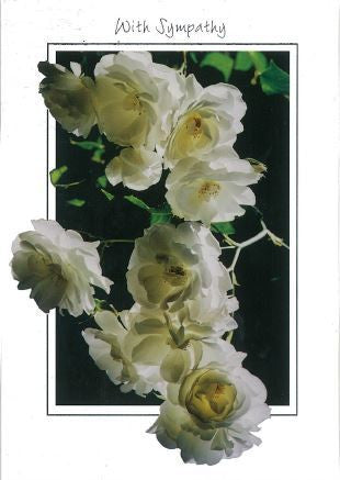 White Roses Sympathy cards (pack of 5)
