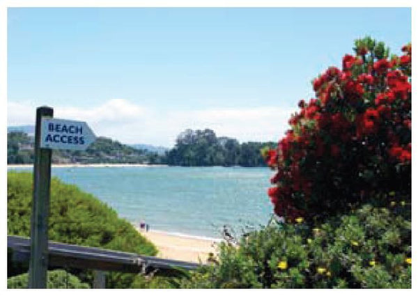 Beach access At Kaiteriteri (pack of 8)