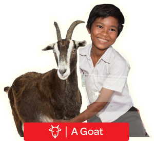 A Goat - Digital Gift Card