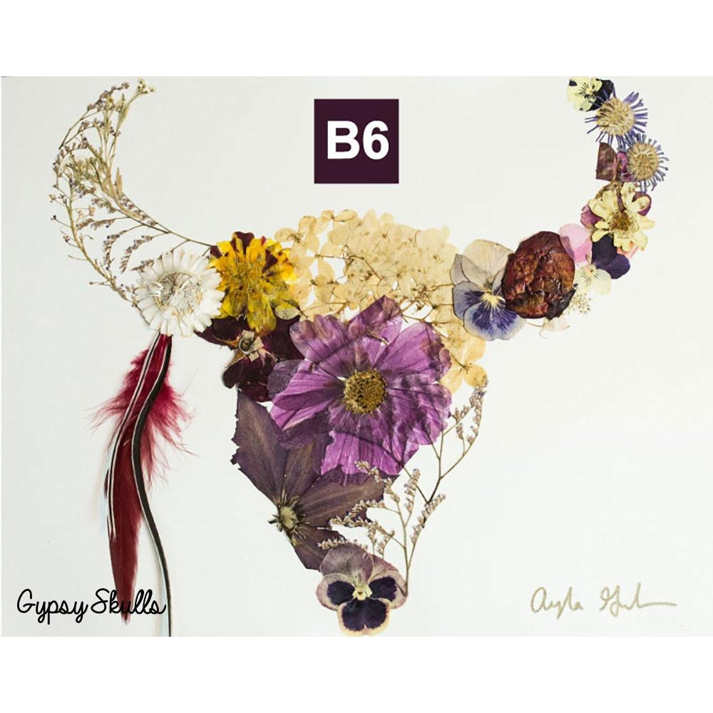 Buffalo 6 Pressed Flower Art Print