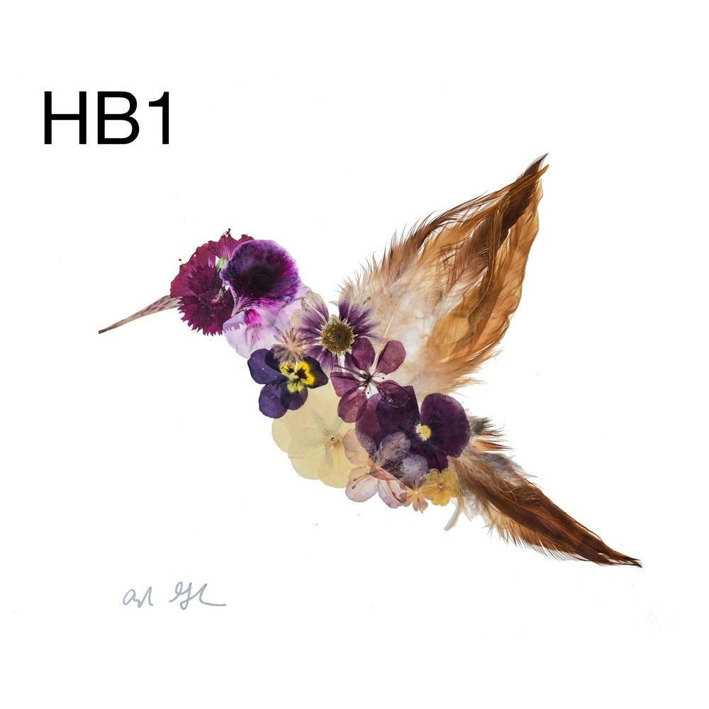Humming Bird 1 Pressed Flower Art Print