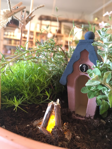 Fairy Garden Workshop // May 24 7-9pm