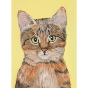 Meow the Cat Art Print