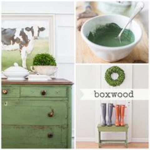 Boxwood Milk Paint