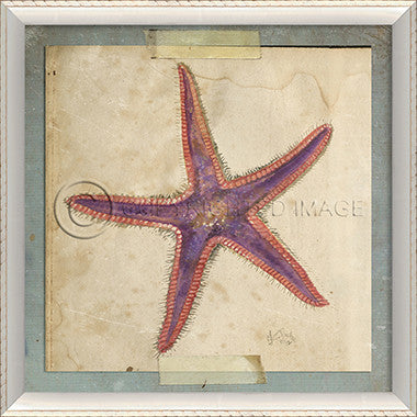Starfish Art 6 - Coastal Cottage Home