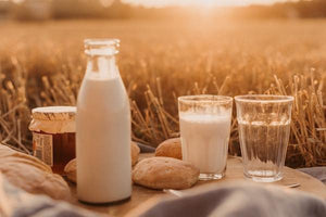 What is the Best Milk to Drink on Keto
