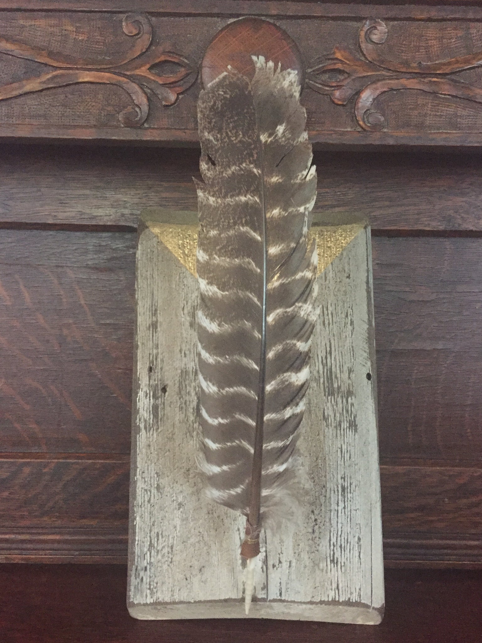 Mounted Feather