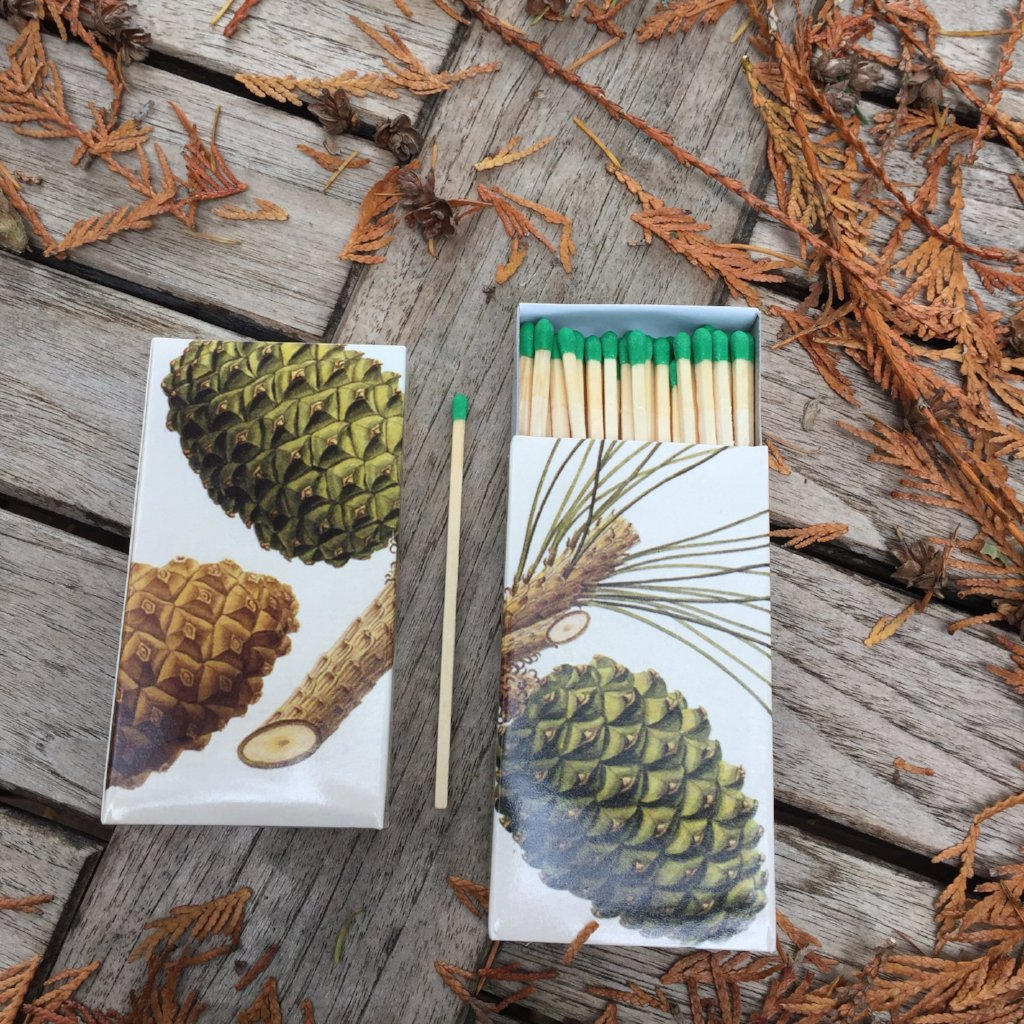 Pine Cone Matches