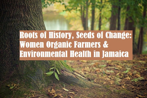 Roots of History, Seeds of Change