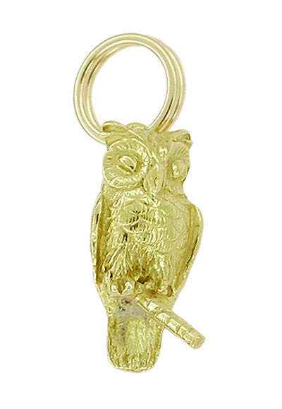 Wise Owl Charm in 14 Karat Gold