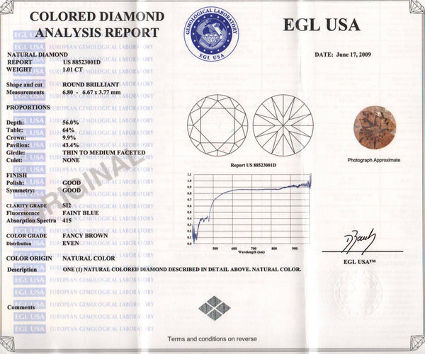 1.01 Carat Velvet Cocoa Fancy Brown Loose Diamond | Natural Color Round Brilliant Sl2 Clarity - Item: D169 - Image: 1