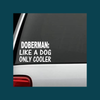 "Image of Doberman ""Like A Dog Only Cooler""  Decal"