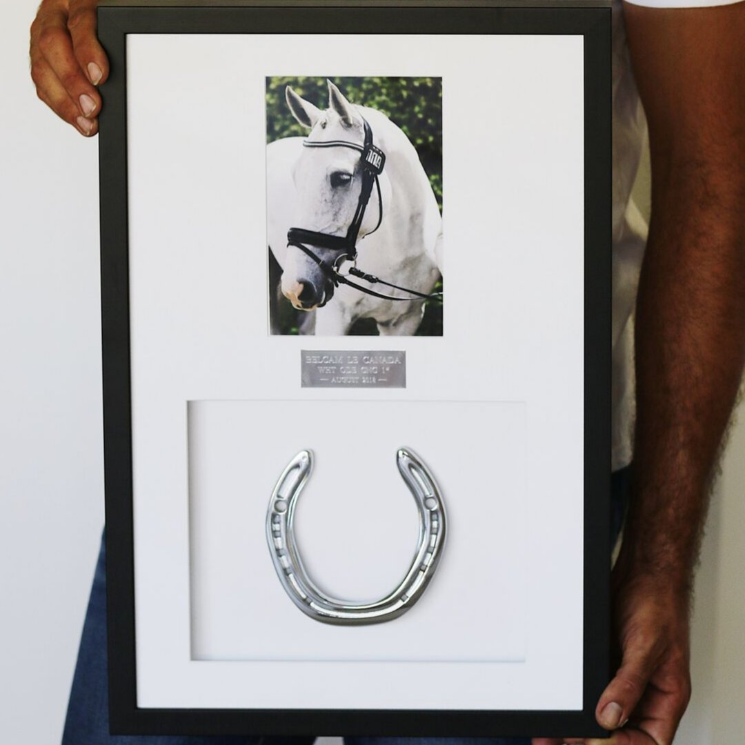 Framed Horseshoe Mementoes