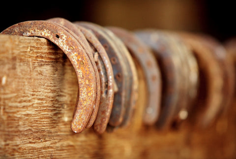 Rusty Horseshoes