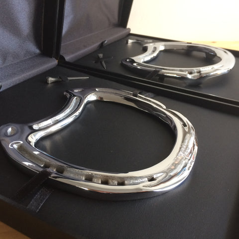 Beau's Chrome Horseshoe Mementoes
