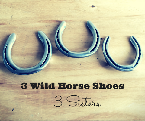 Wilson Sisters Wild Horse Shoes