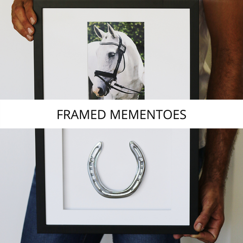 Framed Horseshoe Mementoes Collection